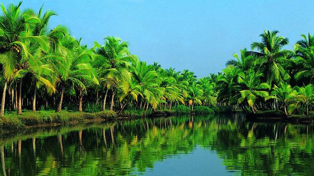 kerala4you-backwaters